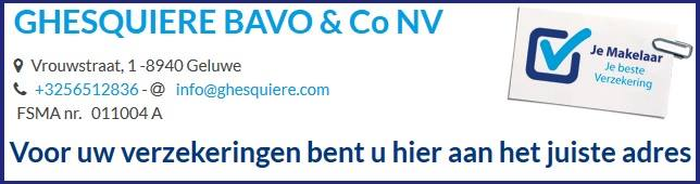Ghesquire Bavo & co nv